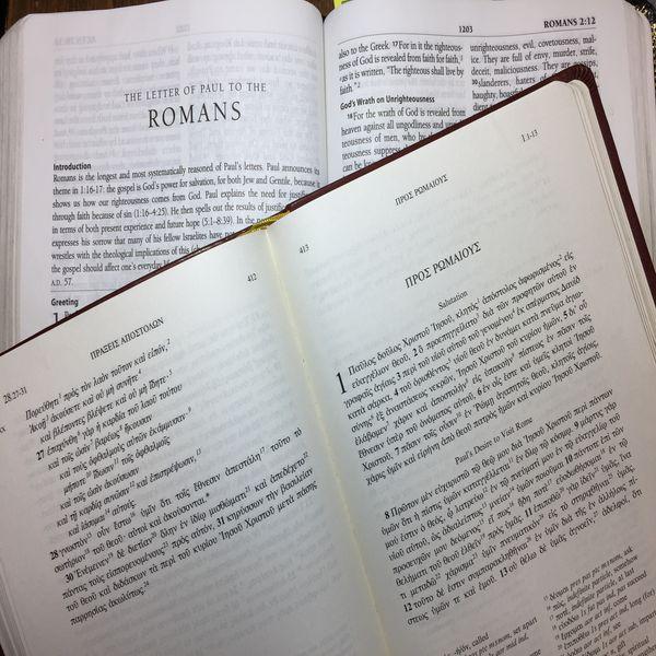 Romans 1: Man's Fall